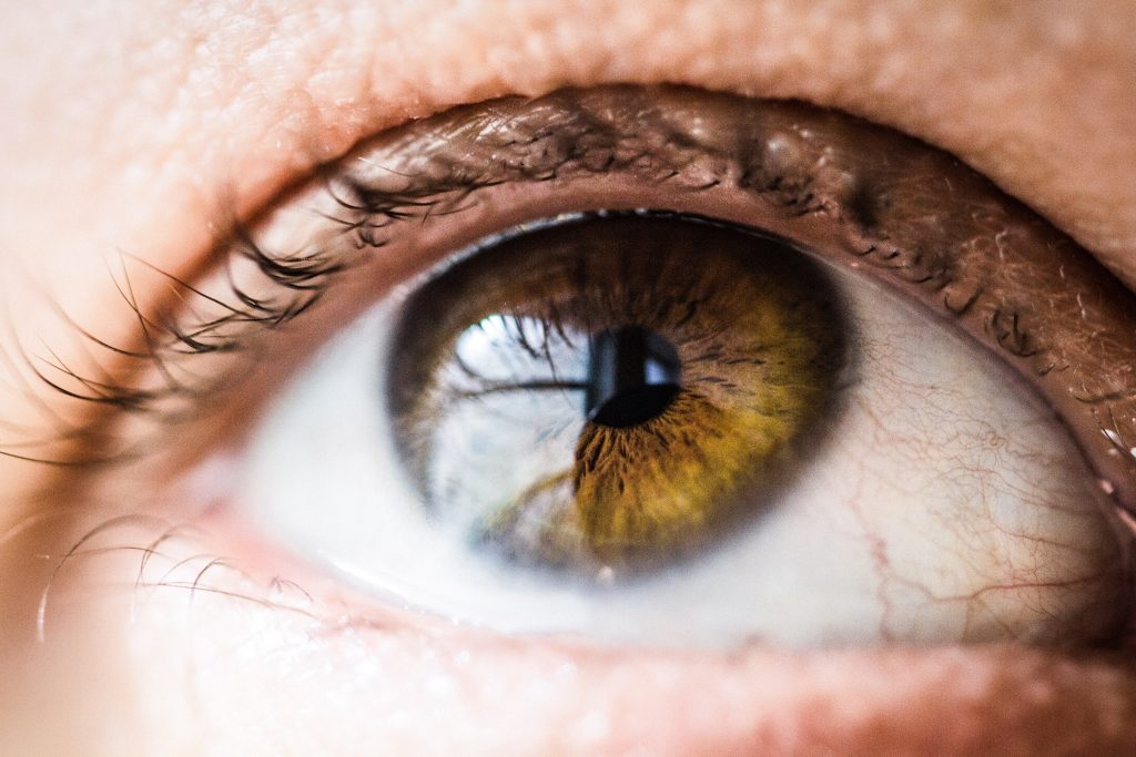 Why Hypnotists Should Learn Neuroscience